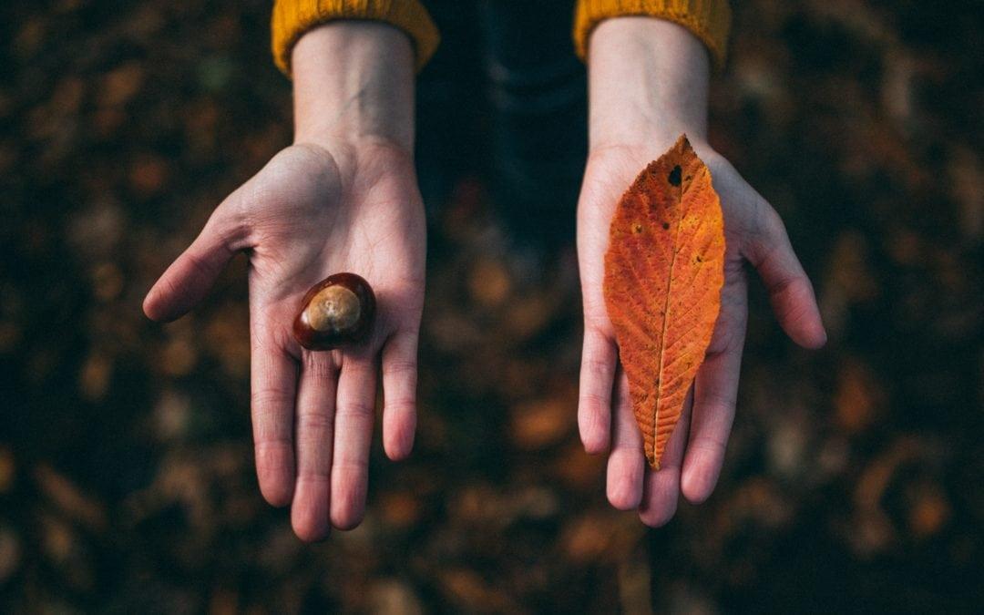 7 Hechos acerca del Proceso de Toma de Decisiones que Deberías Saber